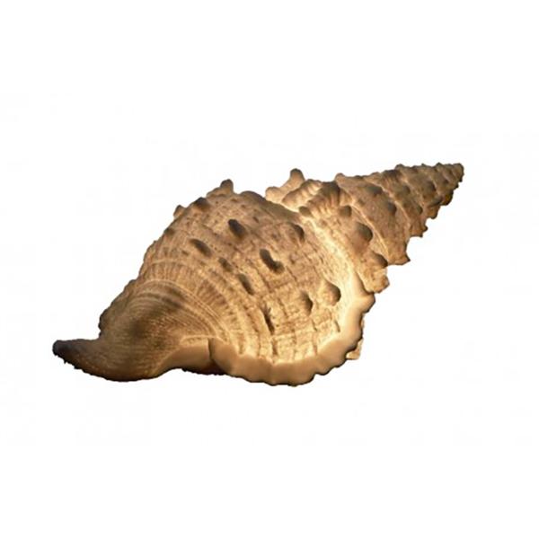 Kagyló éjjeli lámpa Lámpa